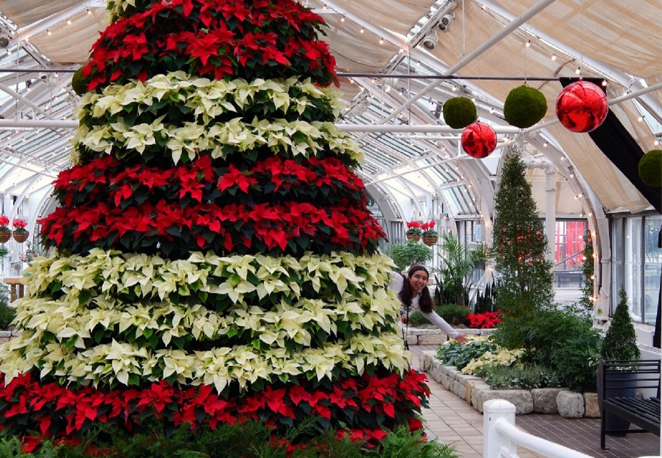 Franklin Park Conservatory Christmas Lights.8 Holiday Light Displays To Visit In Columbus This Winter